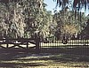 Kanapaha Cemetery gets a New Gate